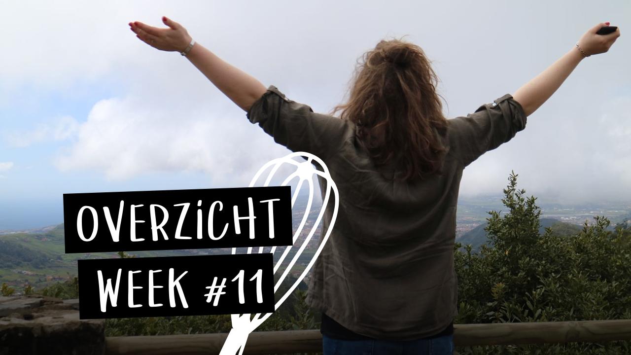 yt-week11