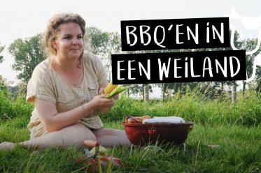 Vlog #7    Bbq'en in een weiland